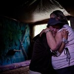 Vali és Albi az erdőből lakásba költözött - Nagyítás-fotógaléria