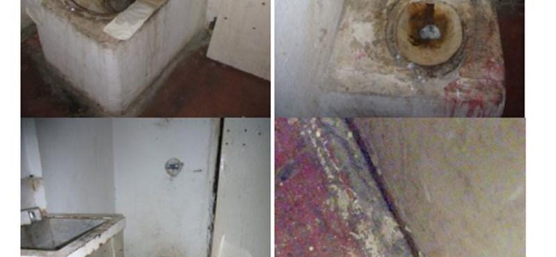 Csótányok, erőszak, váladék a falakon – embertelen körülményeket találtak a tököli börtönben