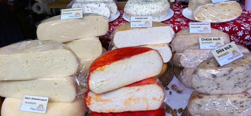 Lassú élvezetek: hogy jön a csiga a sajthoz?
