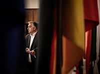 A veszélyhelyzet alatt gyűjtött rengeteg új magyar felhasználót egy titkosított üzenetküldő