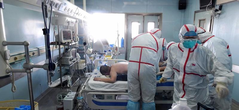 Átterjed az emberre az új típusú madárinfluenza