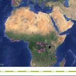 Sokkoló interaktív térképeket készítettek az erdővédők
