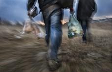 Afgán menekült nyitott fordítóirodát Szerbiában