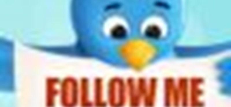 Twitter: hamis népszerűség?