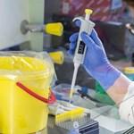 Virológusok: Érthető az óvatosság a mutálódott brit koronavírus miatt