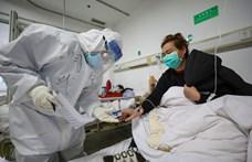 Megállíthatatlanul terjed a koronavírus-fertőzés a karantén alá vett hajón