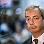A kutyának sem kellett Nigel Farage portréja
