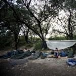 Szakértő az M1-en: Nem akadályozzák a szerbek a migránsok beáramlását