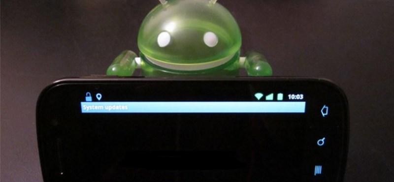 Androidos telefonja van? Zseniális funkciót kapcsolt be a Google