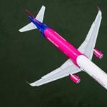 Madárral ütközött az Airbus, le kellett szállnia Ferihegyen