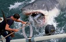 Így emelték be Spielberg hatalmas cápáját az Oscar-múzeumba (videó)