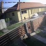 Kertbe hajigálta a budapesti postás a csomagokat – videó