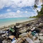 Hasít a bank, melynek célja, hogy ne legyen több műanyag a tengerben, mint hal