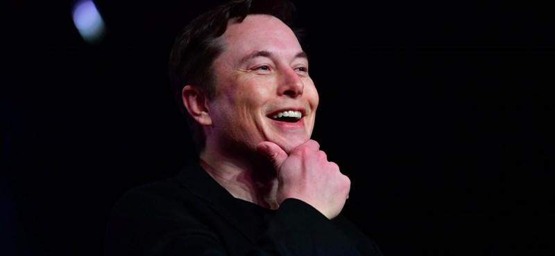 Közvetlenül az agyba sugározná a zenét Elon Musk új találmánya