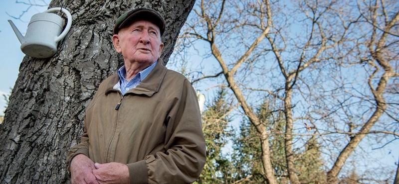 Piacozó nyugdíjasként építette fel a több száz milliós bevételű családi céget