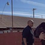 Joaquin Phoenix az állattenyésztés ellen harcol új dokumentumfilmjével