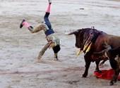 Jótékonysági bikaviadalt rendeznek a munka-nélküli matadorok megsegítésére