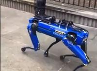A Black Mirrort emlegették, amikor a rendőrség robotkutyája felbukkant New York utcáin