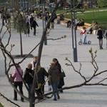 Válságban a Budapest Szíve program? - A volt főépítész cáfol