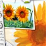 Digitális rajzolás és festészet otthon, kezdőknek és profiknak