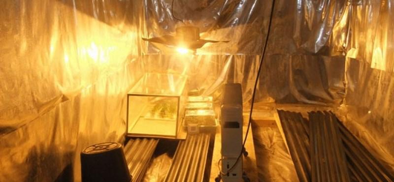 Drogtanyát fedeztek fel Adonyban - fotók