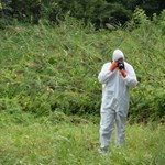 Beismerő vallomást tett a balatonfűzfői gyilkosság gyanúsítottja