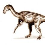 205 millió évvel ezelőtt élt dinoszaurusz agyát rekonstruálták a tudósok