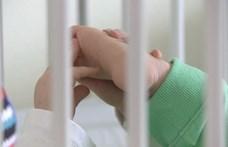 Elhagyhatja a kórházat az a két kétéves kisfiú, akikről szívbetegségük miatt mondtak le szüleik
