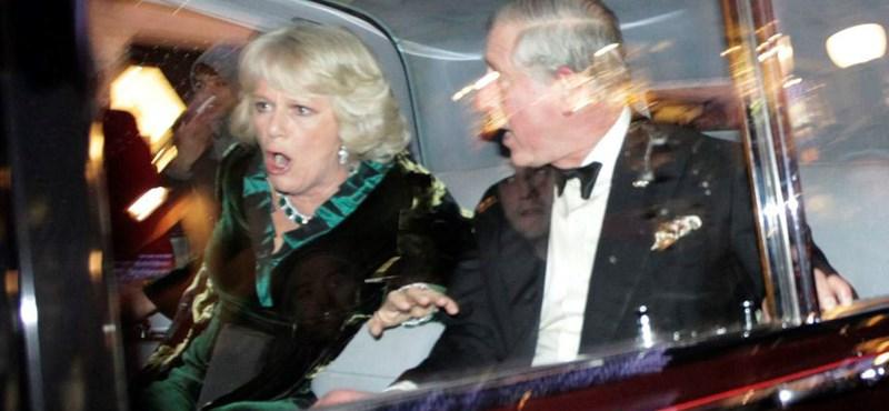 Károly herceg megtámadásáért fog ülni a Pink Floyd-gitáros fia