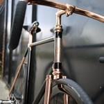 A nap bringája: Madison, az arany-fekete úriember