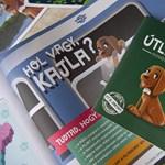 Persze, hogy Fidesz-közeli vállalkozók kaszálnak a gyerekeket célzó Kajla-programon