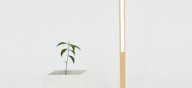 Eltúlzott minimalista lámpa: egy led, egy drót és egy kis faforgács