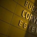 Bekerült a Corvinus kara Európa legjobbjai közé