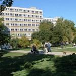 Mesterszakot indít Csehországban a győri egyetem