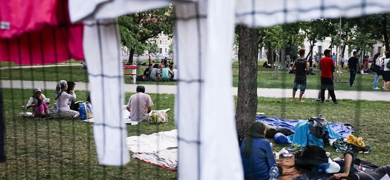 Perlik Kocsis Mátét a migránsokat sértő megjegyzései miatt