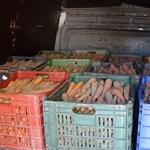 7 tonna bizonytalan eredetű zöldséget talált a NAV egy román kisteherautóban