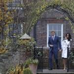 Már megjött az első ajánlat Harry herceg legénybúcsújára