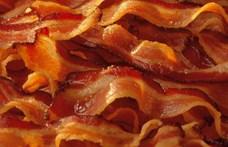 Újabb tanulmány szerint okozhat rákot a bacon