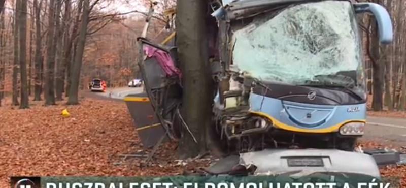 Pár másodperc alatt kellett döntenie a busz sofőrjének, amely fának csapódott a Mátrában