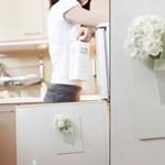 Virág a falból – Ötletes virágtartó modern lakásokba