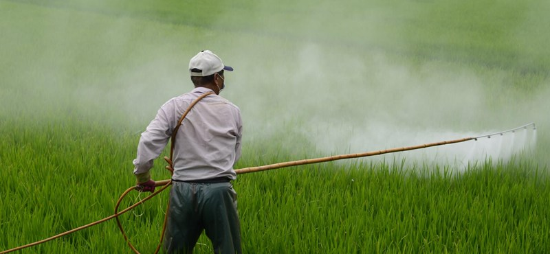 A korábbinál jóval kevesebb növényvédőszert és antibiotikumot lehet csak használni az EU-ban