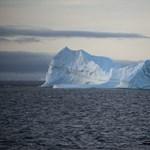 Ha tudni akarja, mi a klímaváltozás, nézze meg ezt a haldokló jegesmedvét