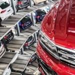 Ilyen lehet a Ford alapra épített Volkswagen