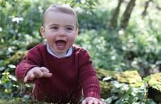 Lajos herceg egyéves lett, és új fotókkal lehet ünnepelni