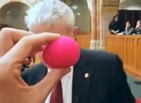 Az Európai Bírósághoz fordul Tordai a félmilliós bohócorr miatt