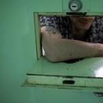 Rabok szkennelik a könyveket a Magyar Elektronikus Könyvtárba