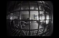 Videó: Egereket küldött a NASA az űrállomásra, egészen furcsán kezdtek viselkedni