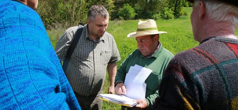 Legyőzte a magyar államot egy bábonymegyeri gazda, akinek elvették a földjét