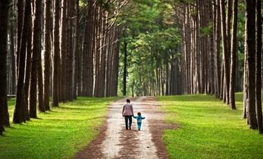 Hogyan kerüljünk közelebb a belső anyánkhoz?