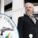 Az ENSZ Assange mellett döntött, de ő még mindig csak az erkélyig merészkedett